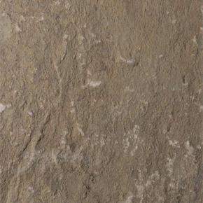 Grigio karachi arenaria